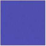 Bazzill - 12 x 12 Cardstock - Orange Peel Texture - Mediterranean