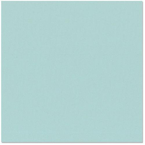 Bazzill - 12 x 12 Cardstock - Grasscloth Texture - Tropical