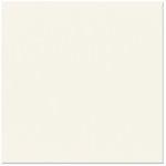 Bazzill Basics - 12 x 12 Cardstock - Classic Texture - Natural
