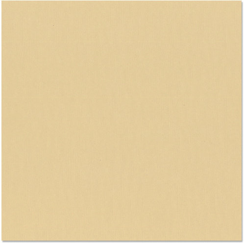 Bazzill - 12 x 12 Cardstock - Grasscloth Texture - Quick Sand
