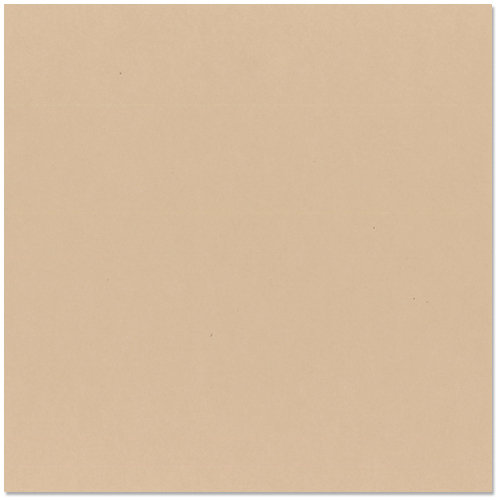 Bazzill - 12 x 12 Cardstock - Smooth Texture - Almond Cream