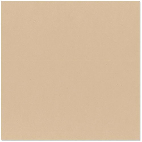 Bazzill Basics - 12 x 12 Cardstock - Smooth Texture - Almond Cream