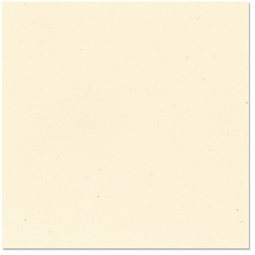 Bazzill - 12 x 12 Cardstock - Classic Texture - Straw