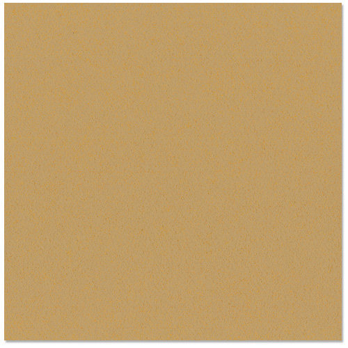 Bazzill - 12 x 12 Cardstock - Orange Peel Texture - Tanner
