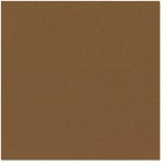 Bazzill - 12 x 12 Cardstock - Canvas Texture - Chocolate