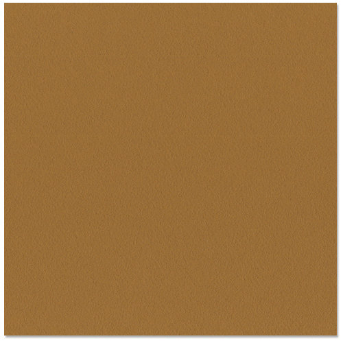 Bazzill - 12 x 12 Cardstock - Orange Peel Texture - Java
