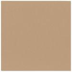 Bazzill Basics - 12 x 12 Cardstock - Criss Cross Texture - Cocoa