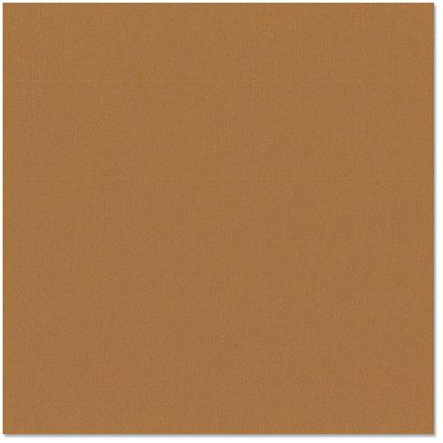 Bazzill - 12 x 12 Cardstock - Grasscloth Texture - Cinnamon Stick