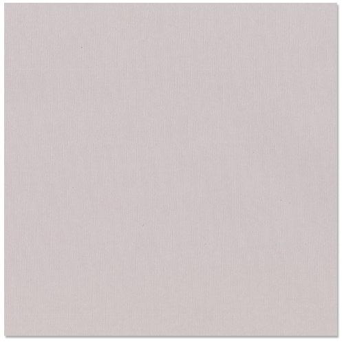 Bazzill - 12 x 12 Cardstock - Grasscloth Texture - Stonehenge