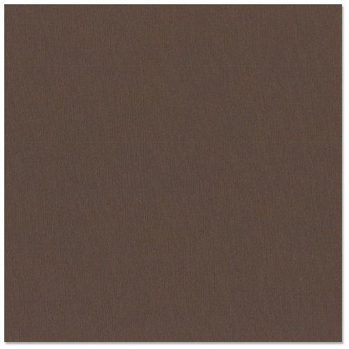 Bazzill - 12 x 12 Cardstock - Grasscloth Texture - London Fog