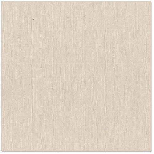 Bazzill Basics - 12 x 12 Cardstock - Canvas Texture - Twig