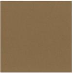 Bazzill - 12 x 12 Cardstock - Smooth Texture - Carob Cream