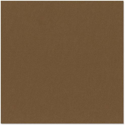 Bazzill - 12 x 12 Cardstock - Canvas Texture - Bark