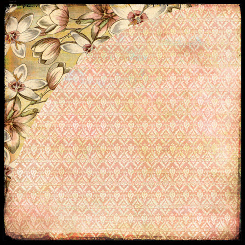 BasicGrey - Curio Collection - 12 x 12 Double Sided Paper - Camelia