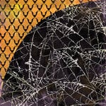 BasicGrey - Eerie Collection - Halloween - 12 x 12 Double Sided Paper - Spiders Web, CLEARANCE
