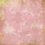BasicGrey - Indian Summer Collection - 12 x 12 Paper - Woodrose, CLEARANCE