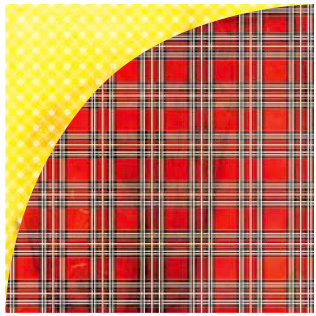 BasicGrey - June Bug Collection - 12 x 12 Double Sided Paper - Vintage Plaid, CLEARANCE