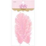 Bella Blvd - Feathers - Carnation
