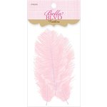 Bella Blvd - Feathers - Frosting
