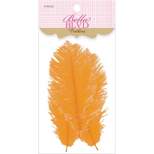 Bella Blvd - Feathers - Orange