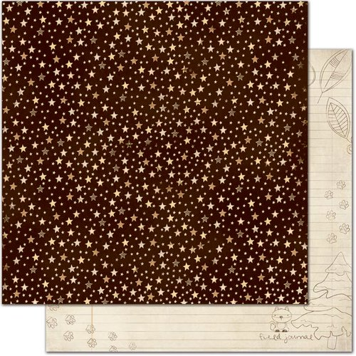 Bo Bunny - Camp-A-Lot Collection - 12 x 12 Double Sided Paper - Starry Night