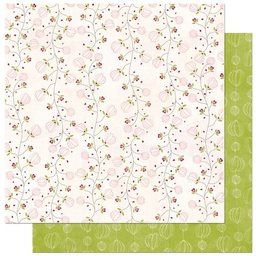 Bo Bunny Press - Love Bandit Collection - 12 x 12 Double Sided Paper - Love Bandit Nuts 4 U, CLEARANCE