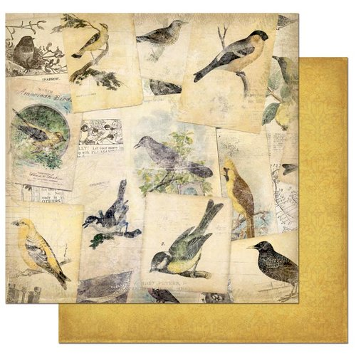 Bo Bunny - Trail Mix Collection - 12 x 12 Double Sided Paper - Bird Watching