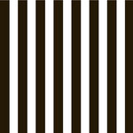 Canvas Corp - Black and White Collection - 12 x 12 Paper - Big Stripe