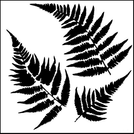 The Crafter's Workshop - 12 x 12 Doodling Templates - Ferns