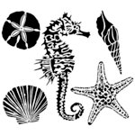 The Crafter's Workshop - 12 x 12 Doodling Template - Sea Creatures