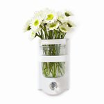 Cosmo Cricket - Mason Jar Sconce - Single - Wide
