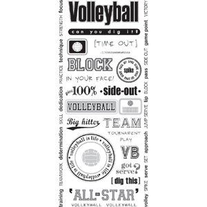 Creative Imaginations - Art Warehouse by Danelle Johnson - Volleyball - Jumbo Sticker Sheet