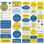 Creative Imaginations - FFA Convention Collection - 12 x 12 Cardstock Stickers - Achievements