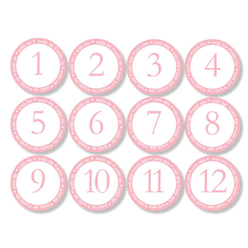 Chic Tags - Delightful Paper Tags - Month to Month Baby Circles - Set of 12