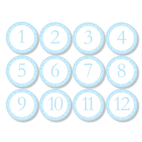 Chic Tags - Delightful Paper Tags - Month to Month Baby Circles - Boy - Set of 12