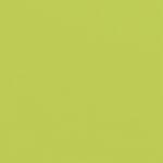Doodlebug Design - 12 x 12 Textured Cardstock - Citrus