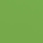 Doodlebug Design - 12 x 12 Textured Cardstock - Grasshopper