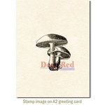 Deep Red Stamps - Cling Mounted Rubber Stamp - Mushrooms