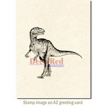 Deep Red Stamps - Cling Mounted Rubber Stamp - Raptor Dinosaur