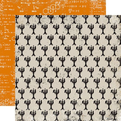 Echo Park - Apothecary Emporium Collection - Halloween - 12 x 12 Double Sided Paper - Black Magic