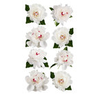 EK Success - Sticko Classic Stickers - White Peony