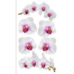 EK Success - Sticko Photo Flowers Collection - Stickers - White Orchids