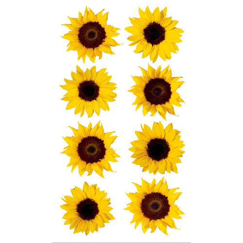 EK Success - Sticko Photo Flowers Collection - Stickers - Sunflowers