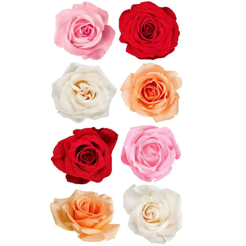 EK Success - Sticko Photo Flowers Collection - Stickers - Rose Mix