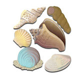 EK Success - Jolee's Boutique - 3 Dimensional Stickers - Seashells