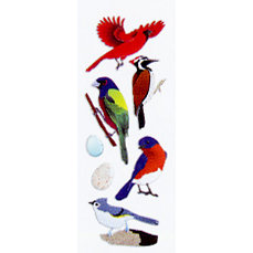 EK Success - Touch of Jolee's - Dimensional Stickers - North American Birds