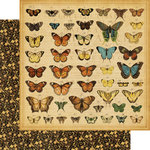 Graphic 45 - Olde Curiosity Shoppe Collection - 12 x 12 Double Sided Paper - Butterfly Specifics
