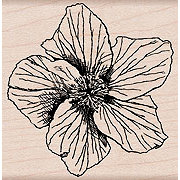 Hero Arts - Woodblock - Wood Mounted Stamps - Garden Star