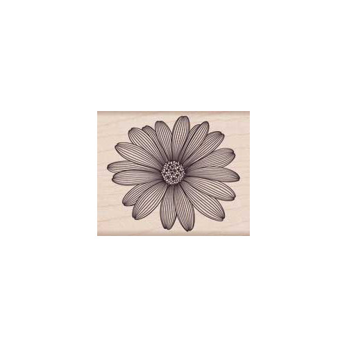 Hero Arts - Woodblock - Wood Mounted Stamps - Etched Daisy