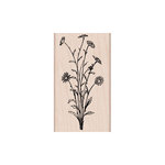 Hero Arts - Woodblock - Wood Mounted Stamps - Flower Spray